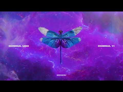 Domnul Udo - Basme feat. Killa Fonic (Audio)