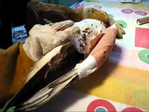Bandaging A Hawk's Wing