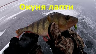 Открытие сезона зимней рыбалки 2020 Окунь на балансир