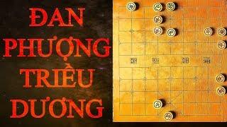 Thế cờ hiểm độc nhất quả đất - Đan Phượng Triều Dương