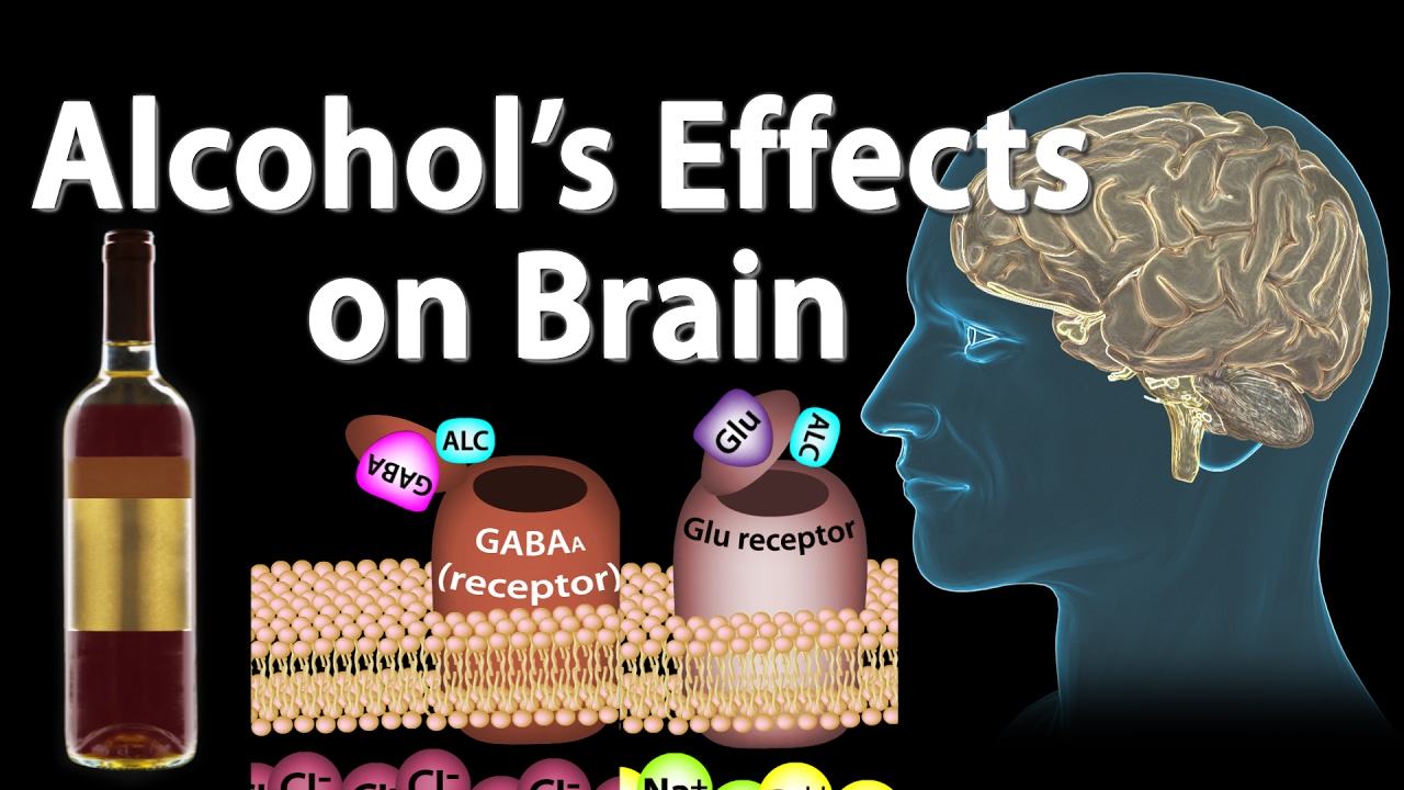effects of alcohol on the brain essay Psychological effects of alcohol on all people would be the brain once alcohol starts to effect regions of this essay and no longer wish to have.