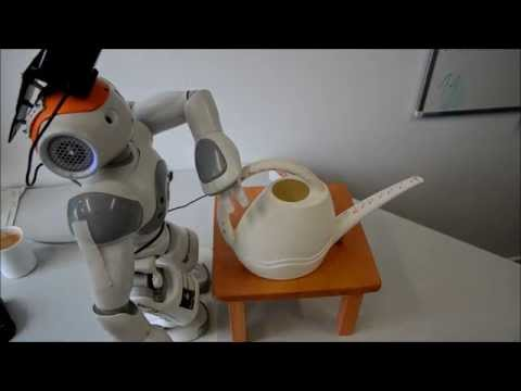 Exploring and Grasping Unknown Objects With NAO: Watering Can