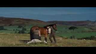 War.Horse.2011 training scene