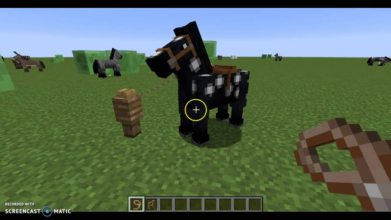 Minecraft comment apprivoiser un cheval youtube - Cheval minecraft ...