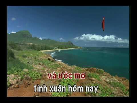ANH VỀ GIỮA MÙA XUÂN   QUỐC DŨNG   karaoke Nhac Xuan