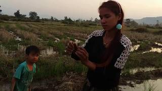 Amazing fishing at Battambang - people fishing in Cambodia - How to Catches fish (Part 51)