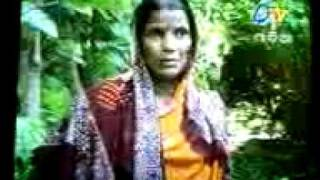 Environment Activities Tree Mother Urmila Behera in Etv Odia- Swapnra odisha