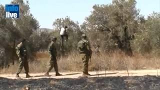 НСБ: На Синайском полуострове готовят терракт(Анти-террористическое бюро Национального Совета по Безопасности призвало всех израильтян находящихся..., 2012-04-23T06:37:30.000Z)