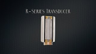 Royer Labs R-Series Ribbon Transducer