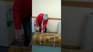 Доставка цветов. Свежая роза , открываем коробку(Роза Эквадор 50 см,, 2017-01-22T13:55:14.000Z)