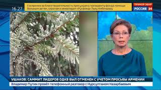 Смотреть видео Желтый уровень погодной опасности: в Москве ожидается гололед онлайн