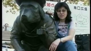 Япония в живом ракурсе