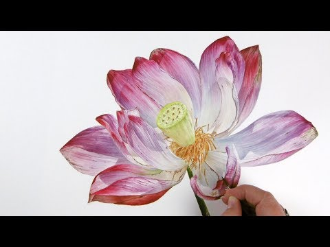 Free lotus flower art music download search download and listen how to paint shadows on a lotus flower jarnie godwin art mightylinksfo