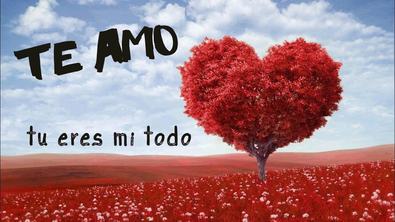 Poema De Amor Tu Eres Mi Todo Venancio Renteria