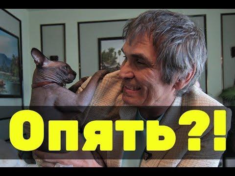 Бари Алибасов снова потерял кота? Что случилось?