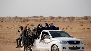 Gambar cover Niger facing demographic challenge