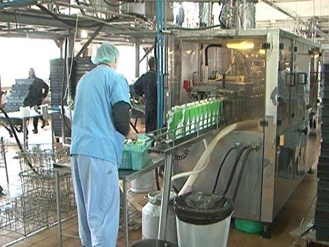 Мониторинг зарплаты в Шебекино