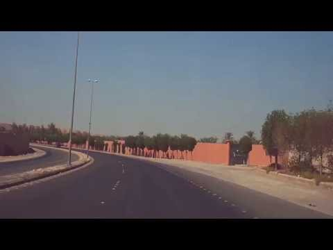 Dates Plantation outside Riyadh