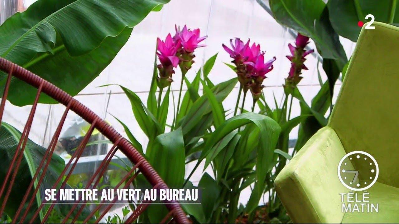 Jardin les nouveaux « bureaux jardins youtube