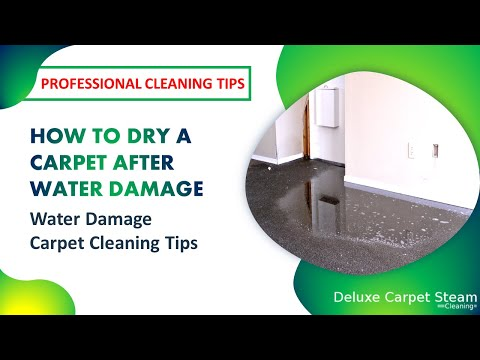 How To Dry A Carpet After Water Damage | Water Damage Carpet Cleaning Tips 2019
