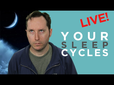 Questions February: Chronotypes - How Your Sleep Cycle Determines Your Success