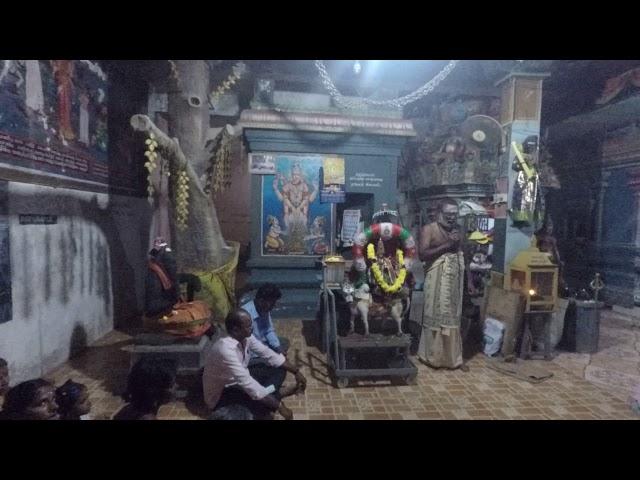 சித்தர்கள் நோக்கில் பிரதோஷ வழிபாடு | கோவில் வழிபாடு ரகசியம்