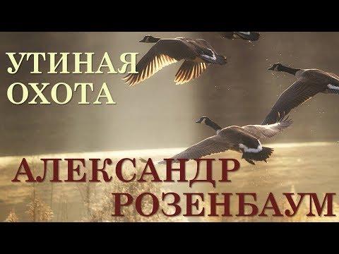 Александр Розенбаум. Утиная охота.