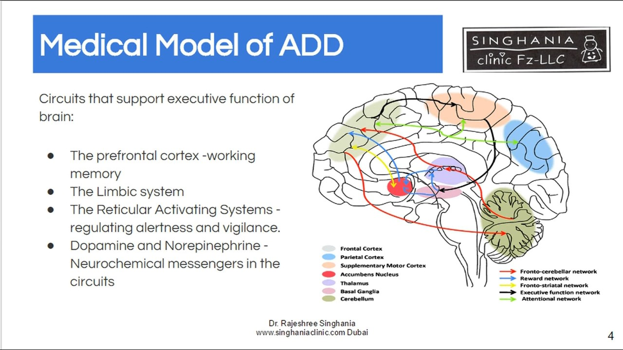 Hyperactivity In Children | The New Understanding About ...