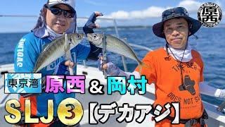 原西&岡村の東京湾SLJ③【デカアジ】