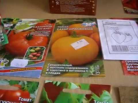 семена томатов видео