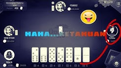 Daftar Cheat Domino Qiu Qiu Melihat Kartu Lawan Tutorial Kreasi Dari Kardus Bekas