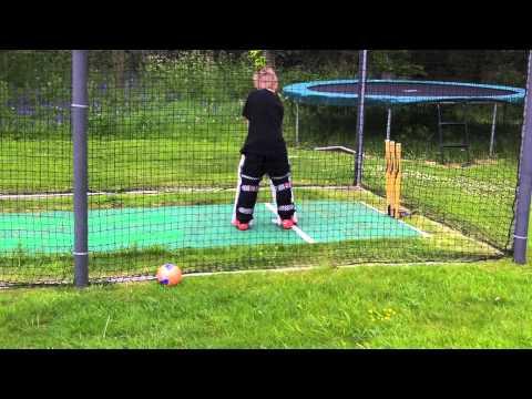 A Cricket Net For A Garden  Making It Secure