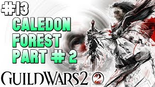 🎮Guild Wars 2 - Playthrough #13🎮 Caledon Forest: Part #2