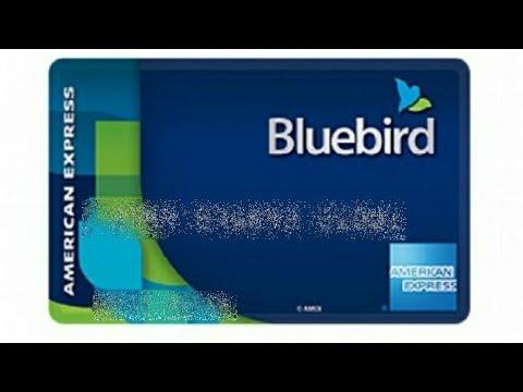 AMEX BLUEBIRD PRO'S AND CON'S