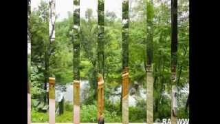 Waterfront Home 7095 Cty. Rd. A - Christina Widiker - Edina Realty