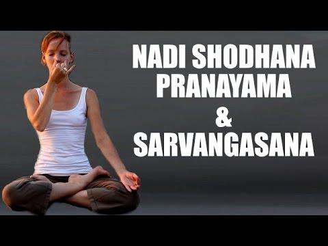 Yoga Asanas | Nadi Shodhana Pranayama and Sarvangasana