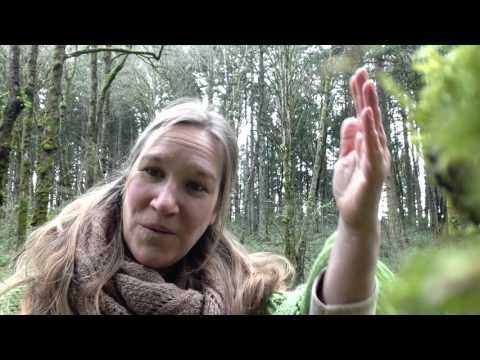 Women of the Wild Heart 2 - Our Interior Landscape