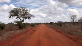 To ta słynna ziemia, od której słonie są czerwone -  Tsavo East National Park - Kenia - Afryka