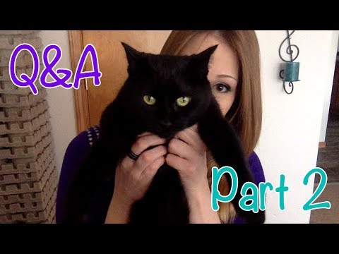 Q&A Part 2: Getting Personal