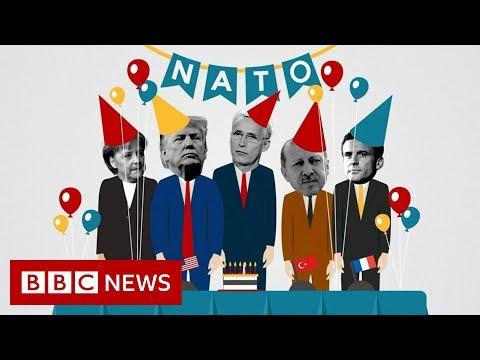 Nato summit: The rifts behind its 70th birthday bash - BBC News