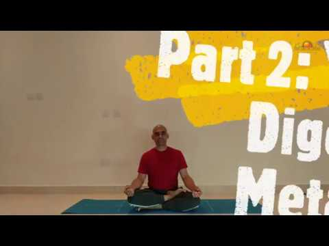 yoga for digestion  metabolism  youtube