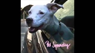 Pet Symmetry - A Detailed and Poetic Physical Threat to the Person Who Intentionally Vandalized...