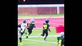 memphis ducks 5 6 2015 spring highlights
