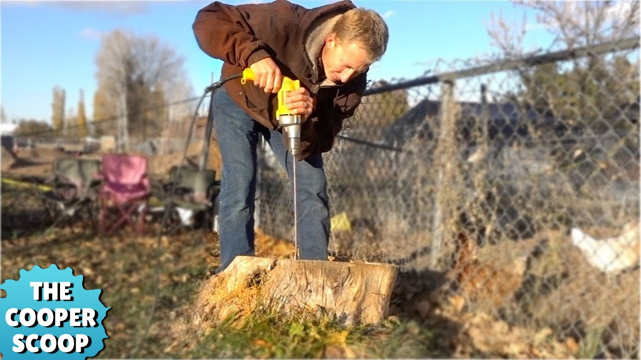 Most Amazing Way To Remove A Tree Stump Youtube