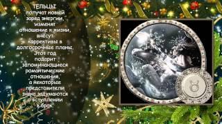 видео Что подарить на Новый год 2015 по знаку гороскопа