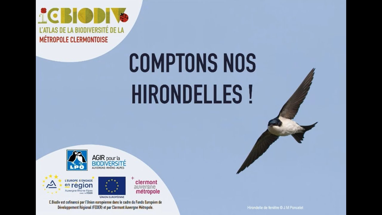 Replay C.Biodiv – Replay – Formation Comptons nos Hirondelles
