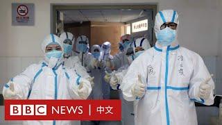 肺炎疫情:快來吸收正能量!BBC告訴你困境中的好消息- BBC News 中文