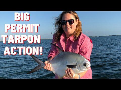 Fishing Cancun For Tarpon, Permit, Jacks, Snapper!