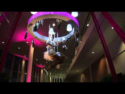 Aerial acts Australia   The Champers Parlour