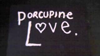 Porcupine Love (Verity's Song) Thumbnail